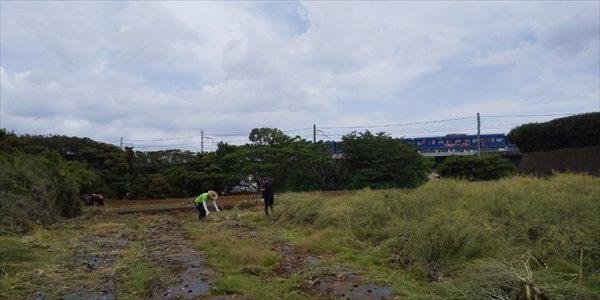2019年05月18日 【渡邉農園】援農ボランティア