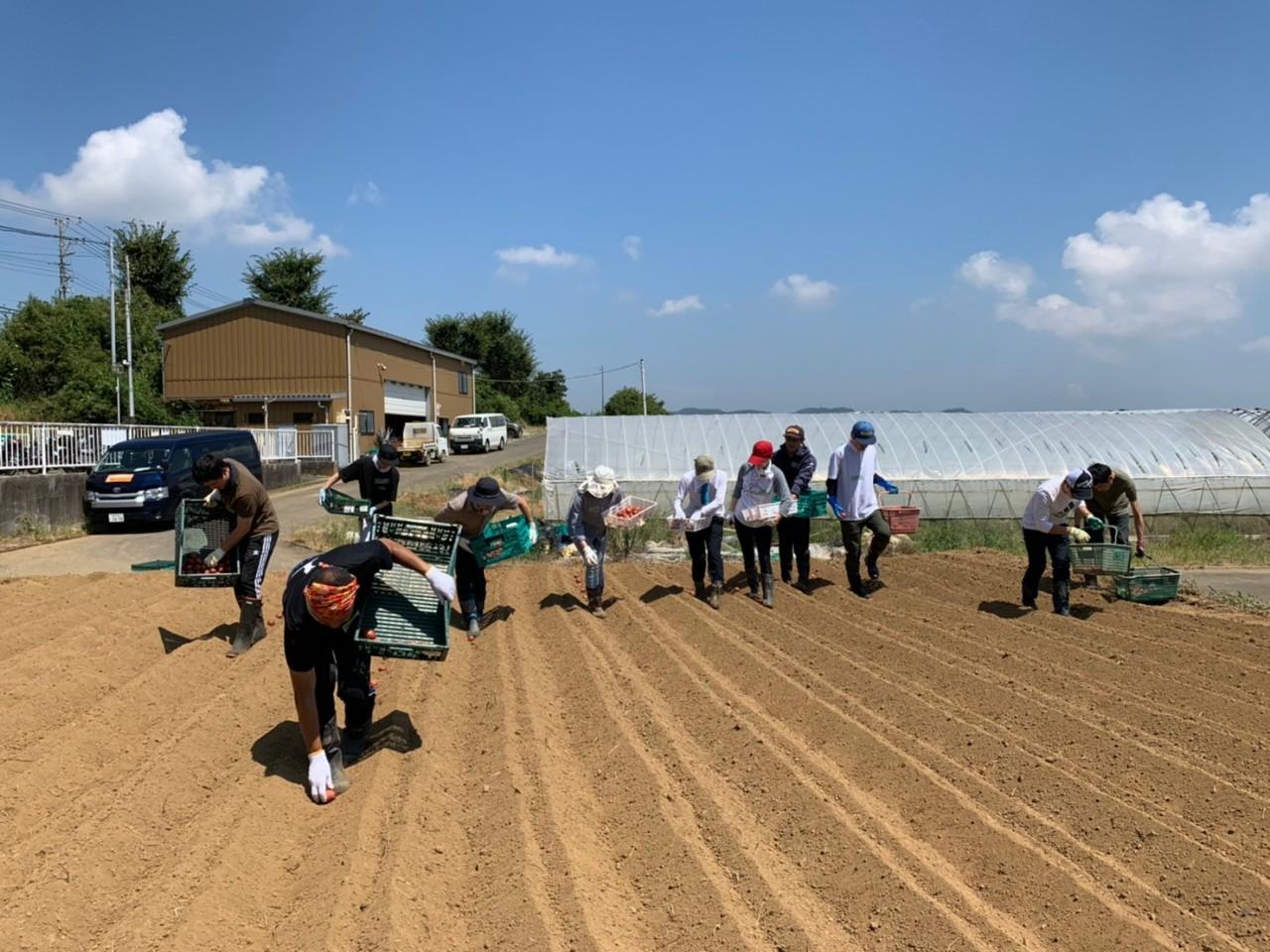 2020年08月22日 【渡邉農園】援農ボランティア