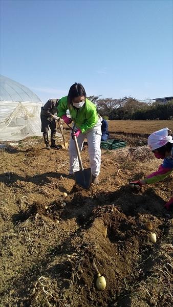 2020年12月27日 【渡邉農園】援農ボランティア