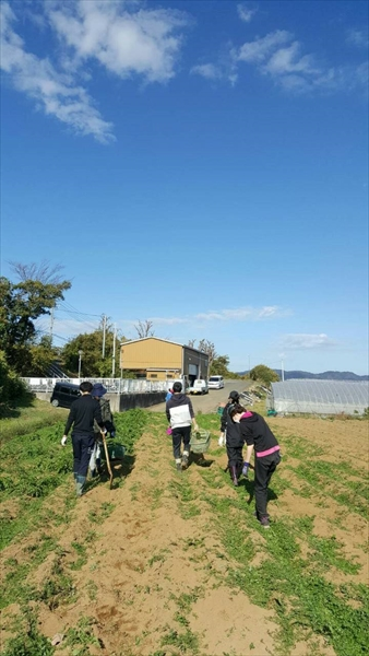 2020年11月22日 【渡邉農園】援農ボランティア