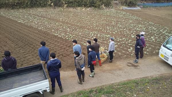 2021年2月14日 【みうら鈴木園】体験農園ボランティア