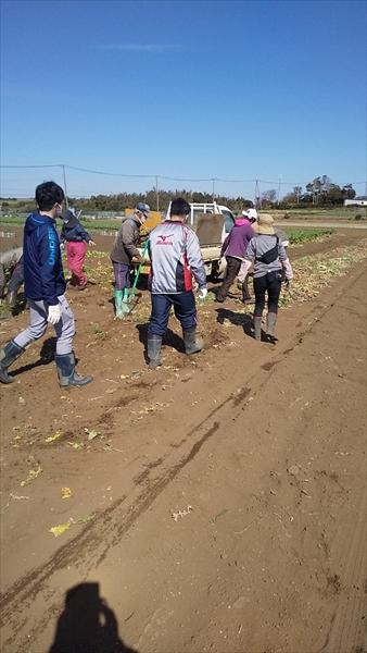 2021年02月28日 【三浦由長島農園】援農ボランティア