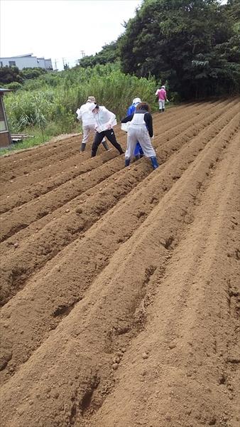2021年8月22日 【渡邉農園】援農ボランティア